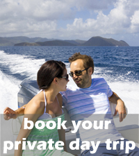 Book your private day trip.